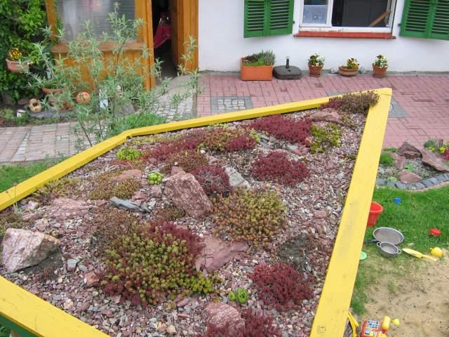 7_Spielhaus Dachbegrünung_erste Fotos canon a80 017.jpg
