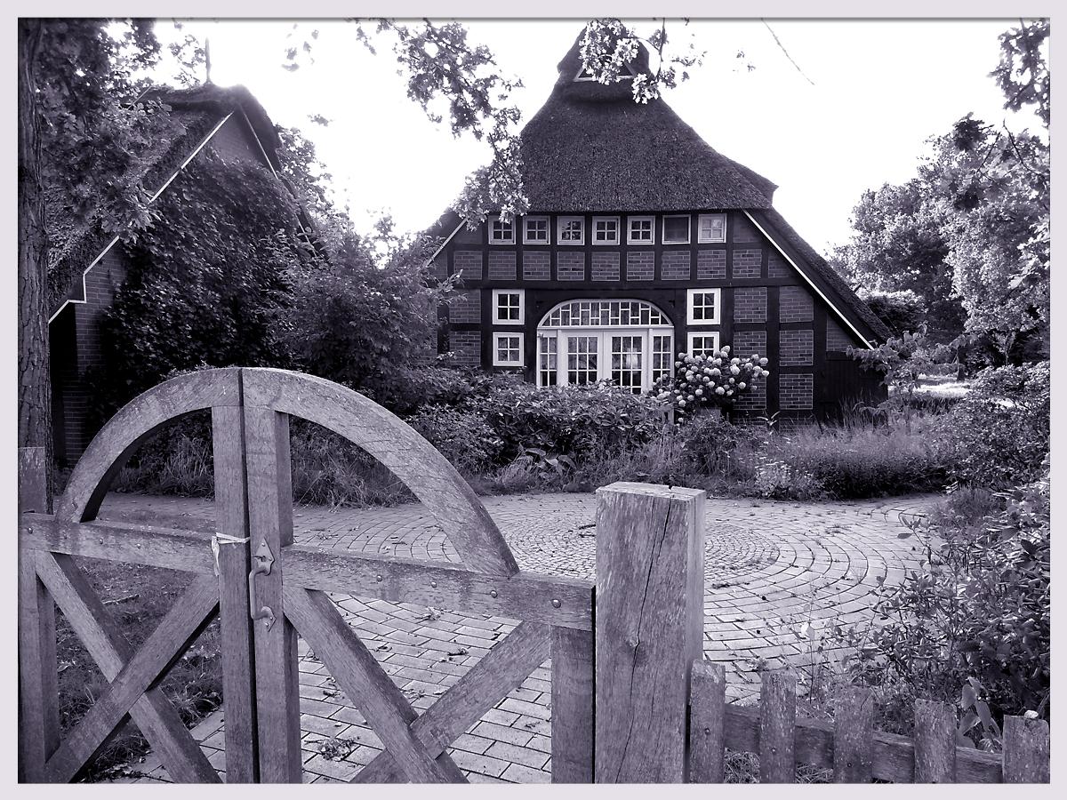 Friesenhaus_Nordenholz.jpg