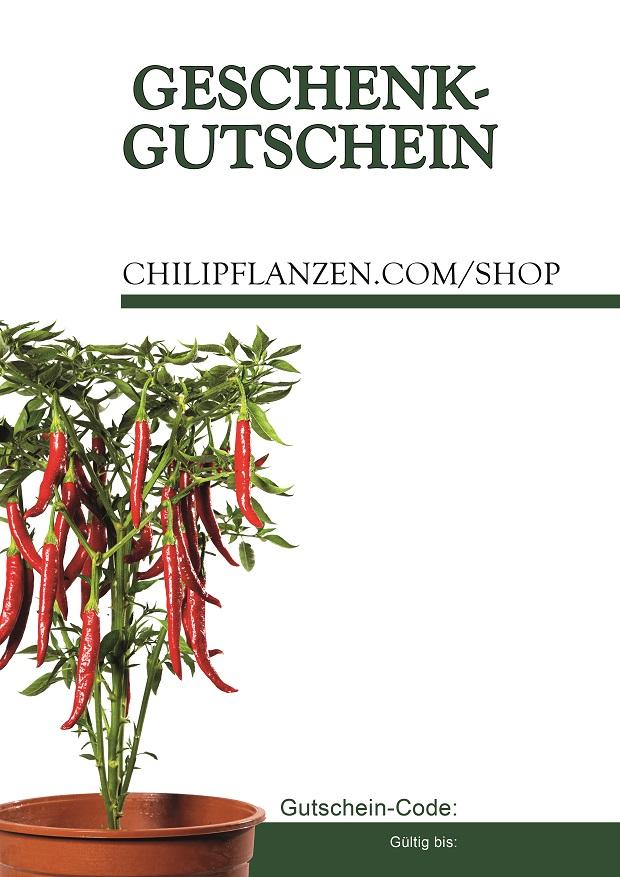 Gutschein-Pflanzen_1.jpg