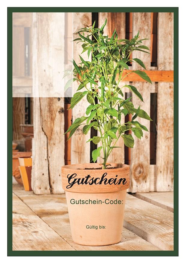 Gutschein-Pflanzen_2.jpg