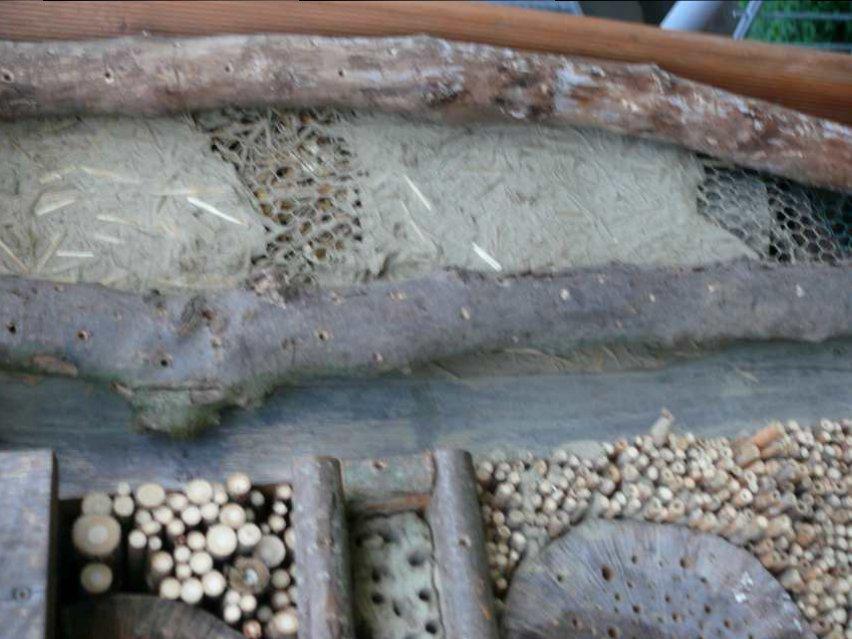 Insektenhotel Ökostation Bergkamen 019.jpg