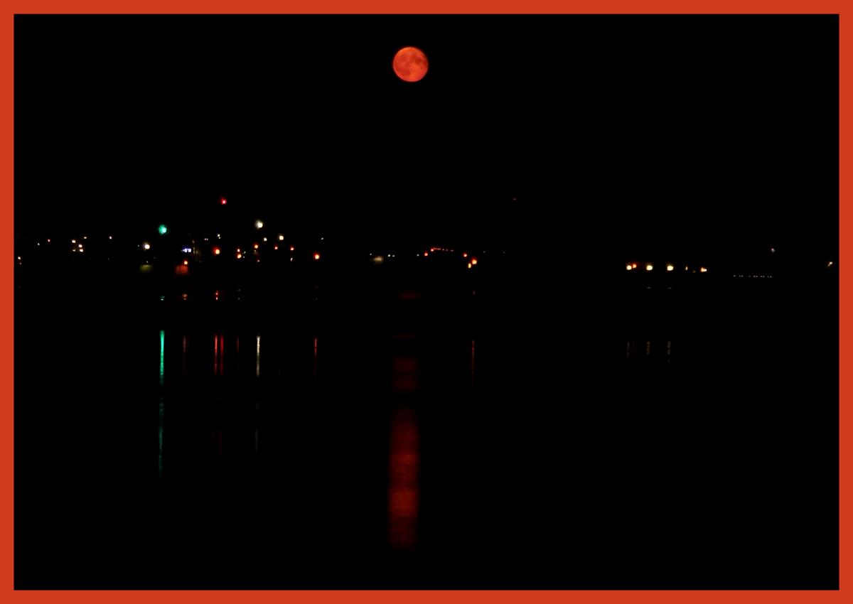 Moon_Wisura-2.jpg