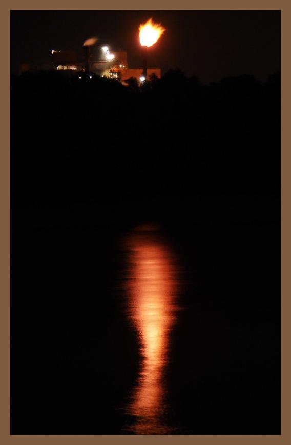 Moon_Wisura-6.jpg