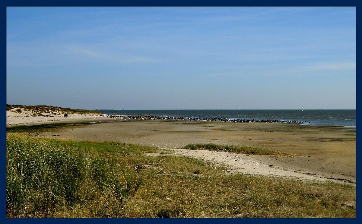 Ostende_Seehundbaenke-3.jpg
